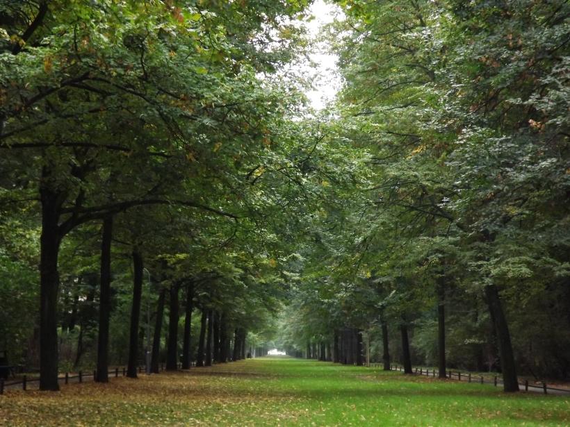 Tiergarten during autumn