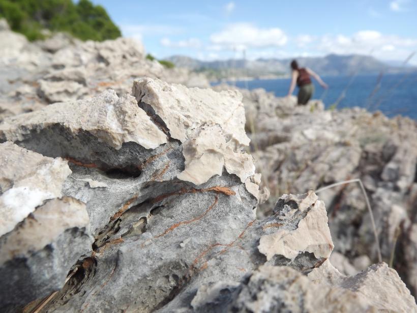 Rocks Lokrum